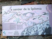220px-01455-Spilonca17